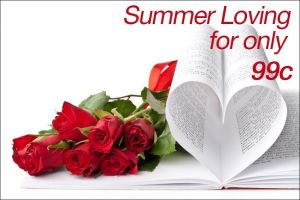 SUMMER LOVING - with frame